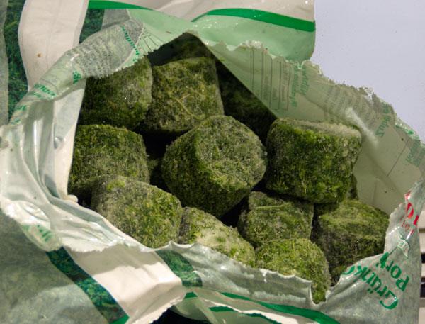 Tiefgefrorener Grünkohl