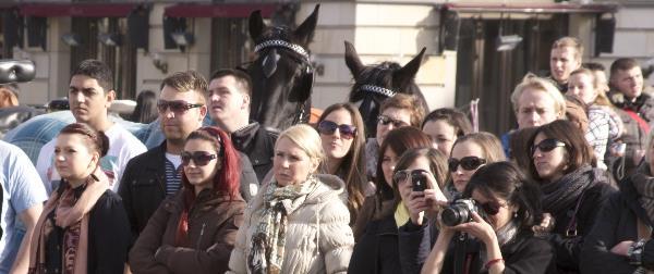 Begeistertes Publikum - Sogar die Pferde schauen zu.