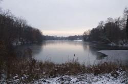 Winter am Ploetzensee