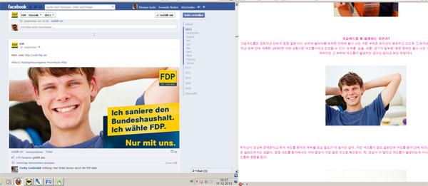FDP Facebook Titelbild 2