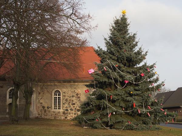 Weihnachtsbaum in Eichstädt